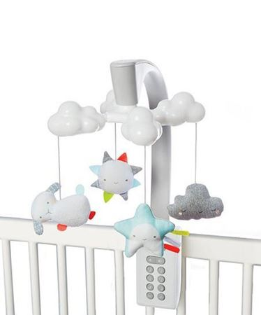 Picture for category Baby Gear