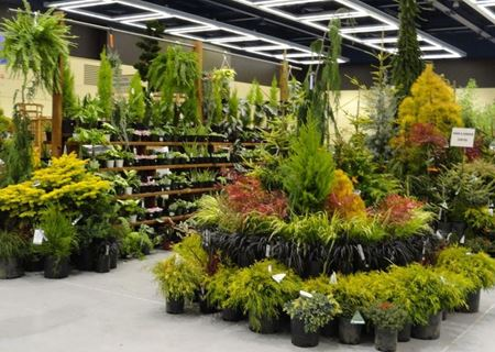 Picture for category Garden , Nursery & Outdoors