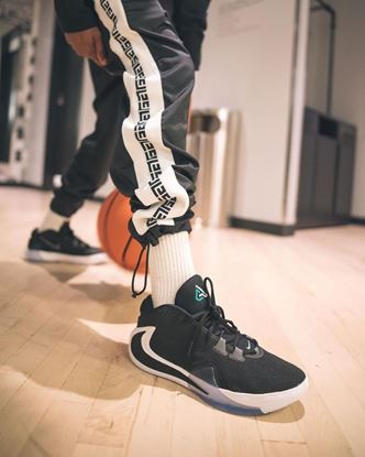 Picture of Brand-Nike Zoom Freak 1 Shoes
